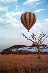 Сафари навоздушном шаре